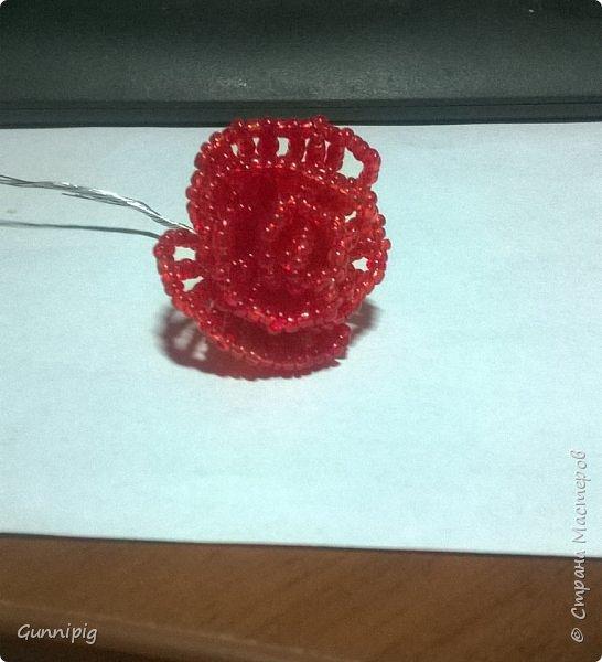 Вот такая красная плетистая розочка у меня получилась. Решила также выложить пошаговый процесс ее создания, мало ли, кому пригодится) фото 10