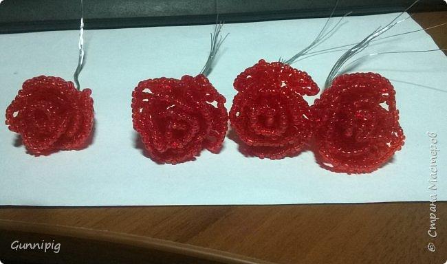 Вот такая красная плетистая розочка у меня получилась. Решила также выложить пошаговый процесс ее создания, мало ли, кому пригодится) фото 14