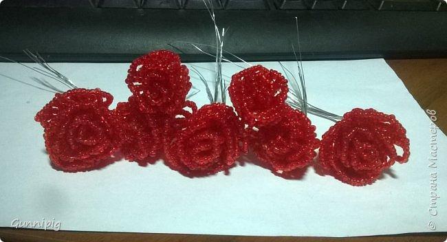 Вот такая красная плетистая розочка у меня получилась. Решила также выложить пошаговый процесс ее создания, мало ли, кому пригодится) фото 17