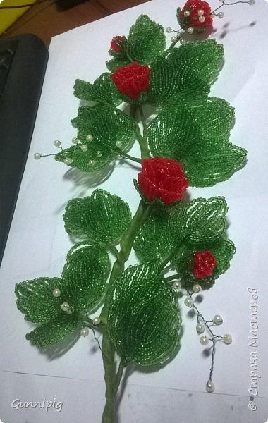 Вот такая красная плетистая розочка у меня получилась. Решила также выложить пошаговый процесс ее создания, мало ли, кому пригодится) фото 33