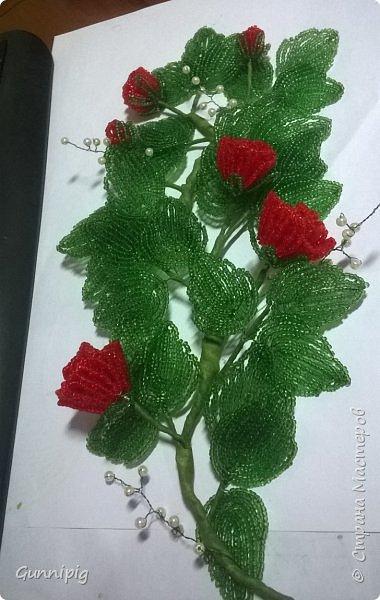 Вот такая красная плетистая розочка у меня получилась. Решила также выложить пошаговый процесс ее создания, мало ли, кому пригодится) фото 34