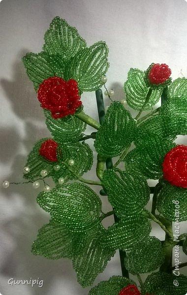 Вот такая красная плетистая розочка у меня получилась. Решила также выложить пошаговый процесс ее создания, мало ли, кому пригодится) фото 42