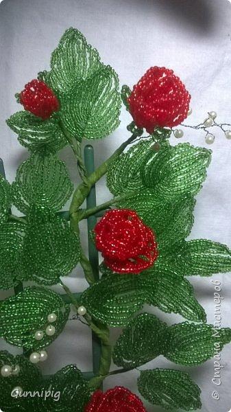Вот такая красная плетистая розочка у меня получилась. Решила также выложить пошаговый процесс ее создания, мало ли, кому пригодится) фото 44