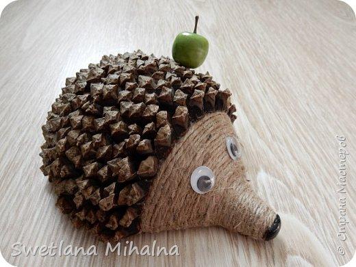 По примеру МК кофейного ёжика  опубликованного  ksyta1983, сделала своего ежа, но только из сосновых шишек. И контейнер для хранения лука я решила использовать многократно, и поэтому использовала его для создания формы в технике папье-маше.  фото 1