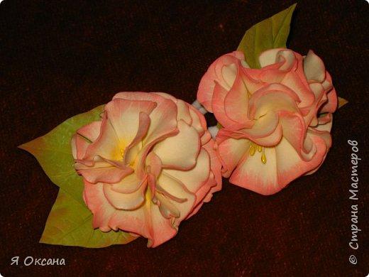 Всем доброй ночи! Наконец-то я дождалась МК этого цветка. Автор и Мастер Юлия Варламова. Целый день удовольствия и в итоге.... Ободок и две резиночки. А Теперь, прошу к просмотру и к обсуждению фото 2