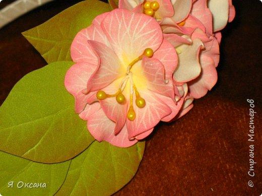Всем доброй ночи! Наконец-то я дождалась МК этого цветка. Автор и Мастер Юлия Варламова. Целый день удовольствия и в итоге.... Ободок и две резиночки. А Теперь, прошу к просмотру и к обсуждению фото 6