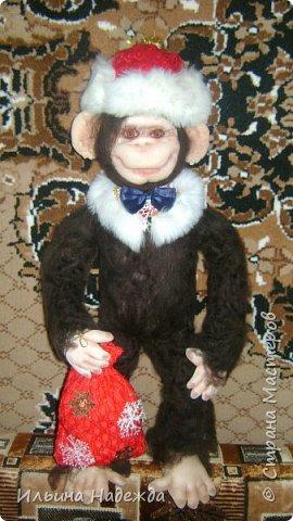 Мои обезьянки фото 1