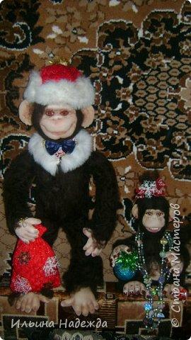 Мои обезьянки фото 3