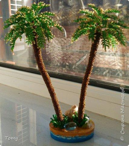 Лето, море, пальмы... фото 1
