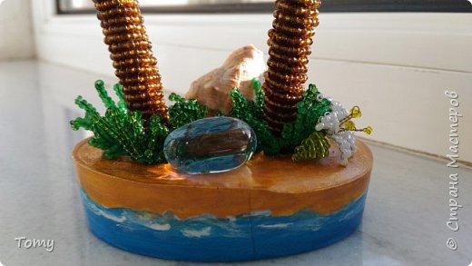 Лето, море, пальмы... фото 2