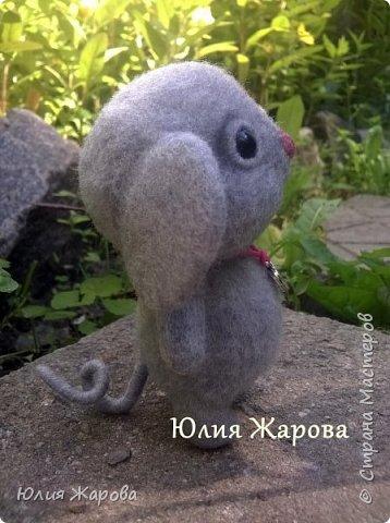 Это мышка Спасибка. Не удивляйтесь странному имени, Спасибка- это благодарность одному хорошему человеку. фото 3