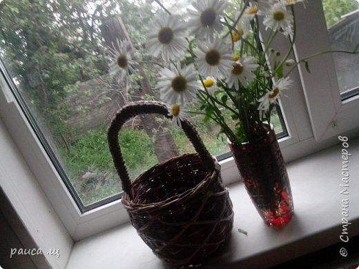 Это моя первая работа ,выставленная в Стране.  Плела по МК Елены Тищенко,трубочки красила водной морилкой. фото 4