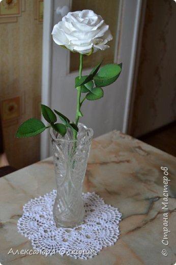Здравствуйте уважаемые мастерицы и гости моего блога. Вот и добралась я наконец до роз из фоамирана. Это моя первая роза. Очень будет интересно ваше мнение. Пишите в комментариях.  фото 1