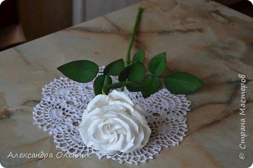 Здравствуйте уважаемые мастерицы и гости моего блога. Вот и добралась я наконец до роз из фоамирана. Это моя первая роза. Очень будет интересно ваше мнение. Пишите в комментариях.  фото 2