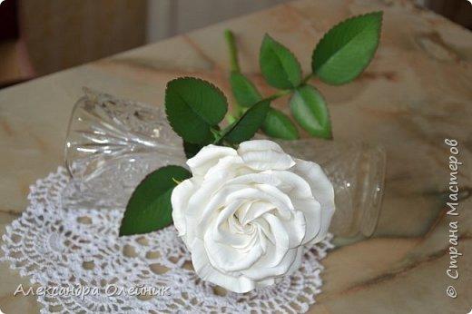 Здравствуйте уважаемые мастерицы и гости моего блога. Вот и добралась я наконец до роз из фоамирана. Это моя первая роза. Очень будет интересно ваше мнение. Пишите в комментариях.  фото 4