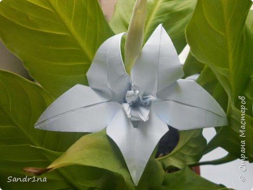 Цветы оригами фото 9