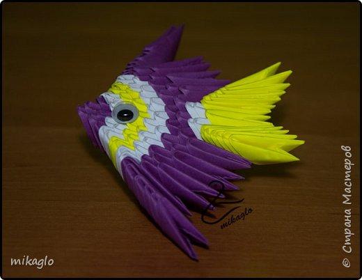 origami 3d fish  фото 4
