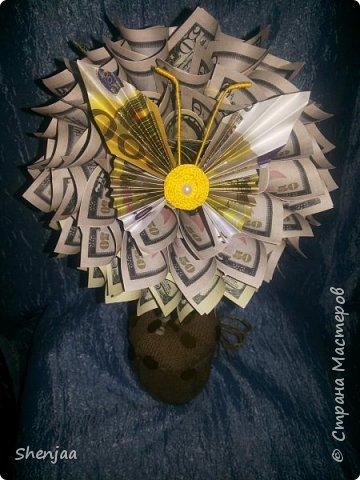 Денежное дерево из долларов (50$ и 100$) фото 4
