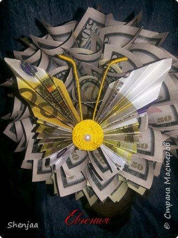 Денежное дерево из долларов (50$ и 100$) фото 2