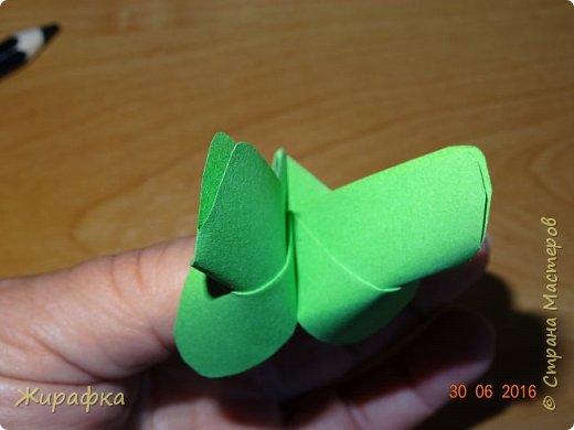 Бабочки... фото 15