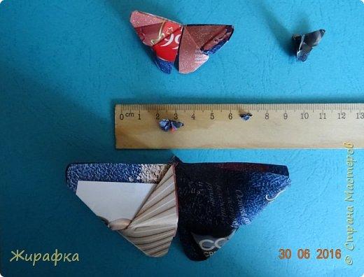 Бабочки... фото 22