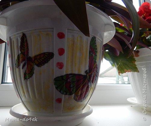 Здравствуйте, все-все жители Страны Мастеров! Недавно panta86 в своем блоге поинтересовалась, как обстоят дела у мастериц на их подоконниках. У меня, конечно, не так все устроено со смыслом, но есть, что показать. Большей частью не на подоконниках, а так просто, на цветах. Зимой налепилась куча всяких мимишных созданий и украшалочек для моих любимых цветочков. Теперь они в каждой комнате на всех цветочках сидят, на меня глядят, радуют. Вот гномик из соленого теста, а над ним бабочка из пластиковых бутылок. фото 11
