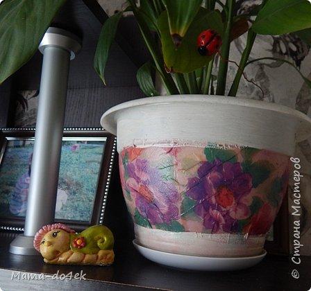 Здравствуйте, все-все жители Страны Мастеров! Недавно panta86 в своем блоге поинтересовалась, как обстоят дела у мастериц на их подоконниках. У меня, конечно, не так все устроено со смыслом, но есть, что показать. Большей частью не на подоконниках, а так просто, на цветах. Зимой налепилась куча всяких мимишных созданий и украшалочек для моих любимых цветочков. Теперь они в каждой комнате на всех цветочках сидят, на меня глядят, радуют. Вот гномик из соленого теста, а над ним бабочка из пластиковых бутылок. фото 5