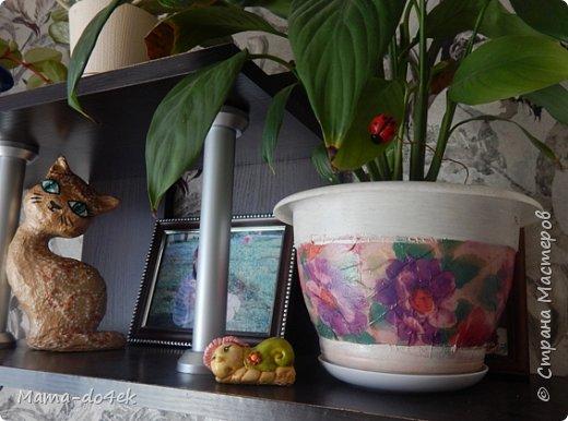 Здравствуйте, все-все жители Страны Мастеров! Недавно panta86 в своем блоге поинтересовалась, как обстоят дела у мастериц на их подоконниках. У меня, конечно, не так все устроено со смыслом, но есть, что показать. Большей частью не на подоконниках, а так просто, на цветах. Зимой налепилась куча всяких мимишных созданий и украшалочек для моих любимых цветочков. Теперь они в каждой комнате на всех цветочках сидят, на меня глядят, радуют. Вот гномик из соленого теста, а над ним бабочка из пластиковых бутылок. фото 6