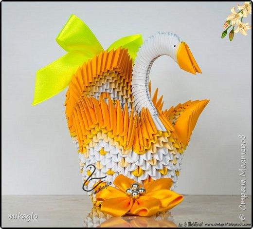 3d origami swan ombre фото 1