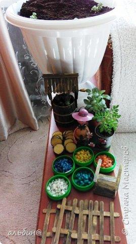 Вот такой мини-сад в вазоне у меня получился. Очень увлекательное занятие оказалось! фото 2