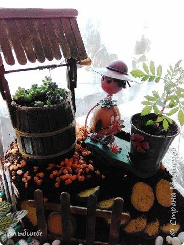 Вот такой мини-сад в вазоне у меня получился. Очень увлекательное занятие оказалось! фото 6