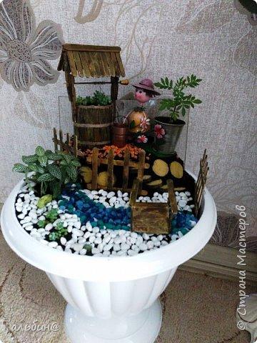 Вот такой мини-сад в вазоне у меня получился. Очень увлекательное занятие оказалось! фото 1