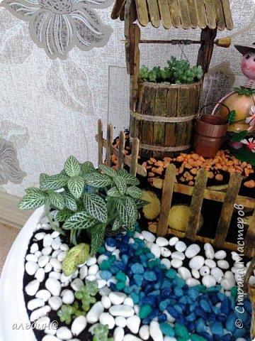 Вот такой мини-сад в вазоне у меня получился. Очень увлекательное занятие оказалось! фото 7