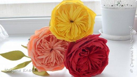 Пионовидные роза по МК Надежды Коноваловой. Спасибо ей огромное! Это резинка для волос.  фото 3