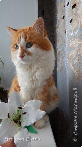 Пионовидные роза по МК Надежды Коноваловой. Спасибо ей огромное! Это резинка для волос.  фото 8