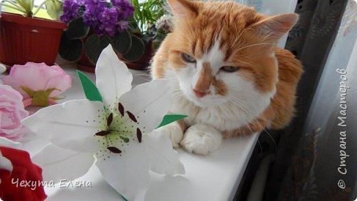 Пионовидные роза по МК Надежды Коноваловой. Спасибо ей огромное! Это резинка для волос.  фото 9