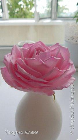 Пионовидные роза по МК Надежды Коноваловой. Спасибо ей огромное! Это резинка для волос.  фото 11