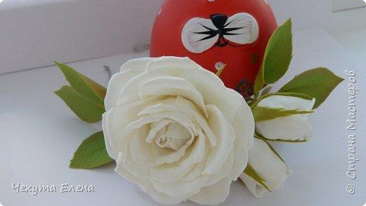 Пионовидные роза по МК Надежды Коноваловой. Спасибо ей огромное! Это резинка для волос.  фото 13