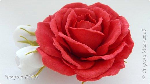 Пионовидные роза по МК Надежды Коноваловой. Спасибо ей огромное! Это резинка для волос.  фото 15