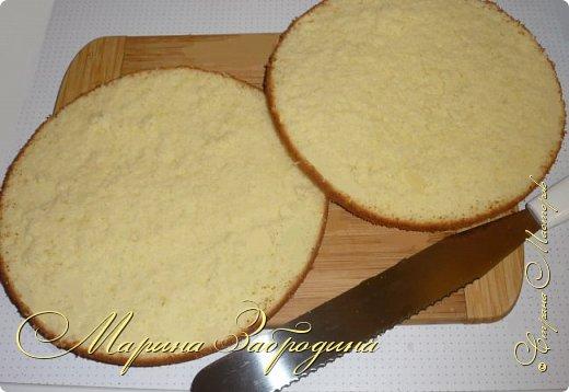 Здравствуйте, мастерицы и гости сайта! Делюсь рецептом нежного и вкусного бисквита на горячем молоке. Он получается нежным, влажным и не требует пропитки сахарным сиропом. фото 12