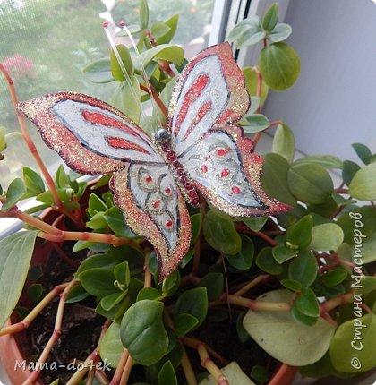 Здравствуйте, все-все жители Страны Мастеров! Недавно panta86 в своем блоге поинтересовалась, как обстоят дела у мастериц на их подоконниках. У меня, конечно, не так все устроено со смыслом, но есть, что показать. Большей частью не на подоконниках, а так просто, на цветах. Зимой налепилась куча всяких мимишных созданий и украшалочек для моих любимых цветочков. Теперь они в каждой комнате на всех цветочках сидят, на меня глядят, радуют. Вот гномик из соленого теста, а над ним бабочка из пластиковых бутылок. фото 14