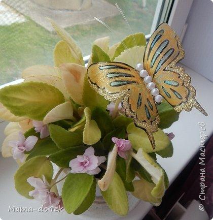 Здравствуйте, все-все жители Страны Мастеров! Недавно panta86 в своем блоге поинтересовалась, как обстоят дела у мастериц на их подоконниках. У меня, конечно, не так все устроено со смыслом, но есть, что показать. Большей частью не на подоконниках, а так просто, на цветах. Зимой налепилась куча всяких мимишных созданий и украшалочек для моих любимых цветочков. Теперь они в каждой комнате на всех цветочках сидят, на меня глядят, радуют. Вот гномик из соленого теста, а над ним бабочка из пластиковых бутылок. фото 16