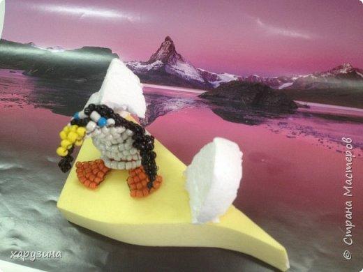 Пингвины фото 6