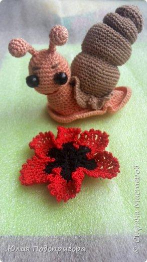 сова-вязальщица фото 7