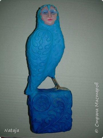Птица - попытка следовать указаниям в  МК Светланы Романтеевой http://stranamasterov.ru/node/921724 . фото 4