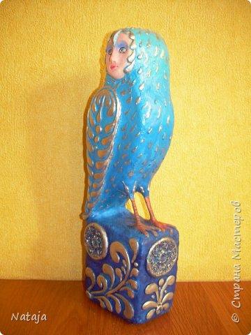 Птица - попытка следовать указаниям в  МК Светланы Романтеевой http://stranamasterov.ru/node/921724 . фото 8