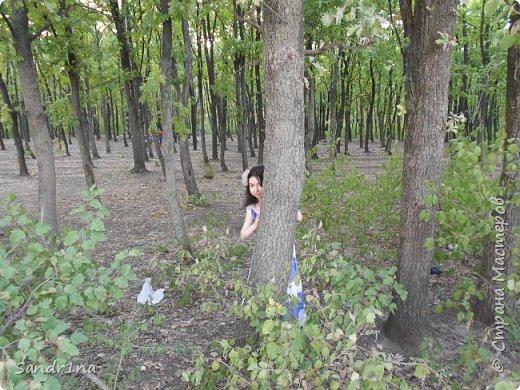 Фото. Мои фантазии (Наш лес и я ) фото 20