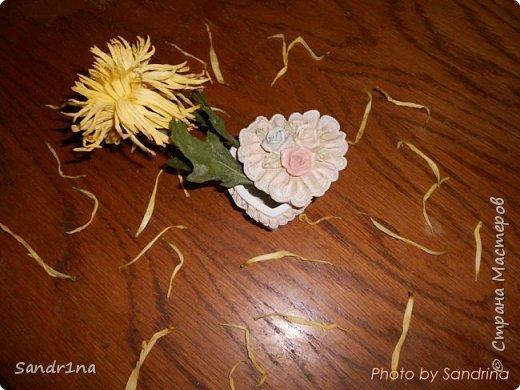 Фоторепортаж Мои фантазии (цветы) фото 5