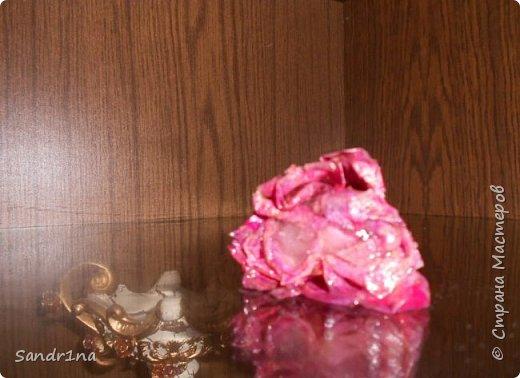 Фото. Мои фантазии (роза в куске льда) фото 8