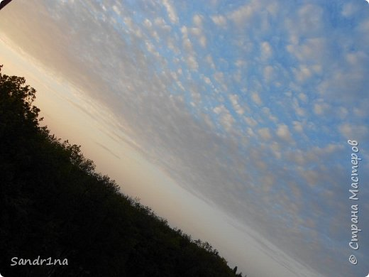Фото. Мои фантазии (Наш лес и я ) фото 27